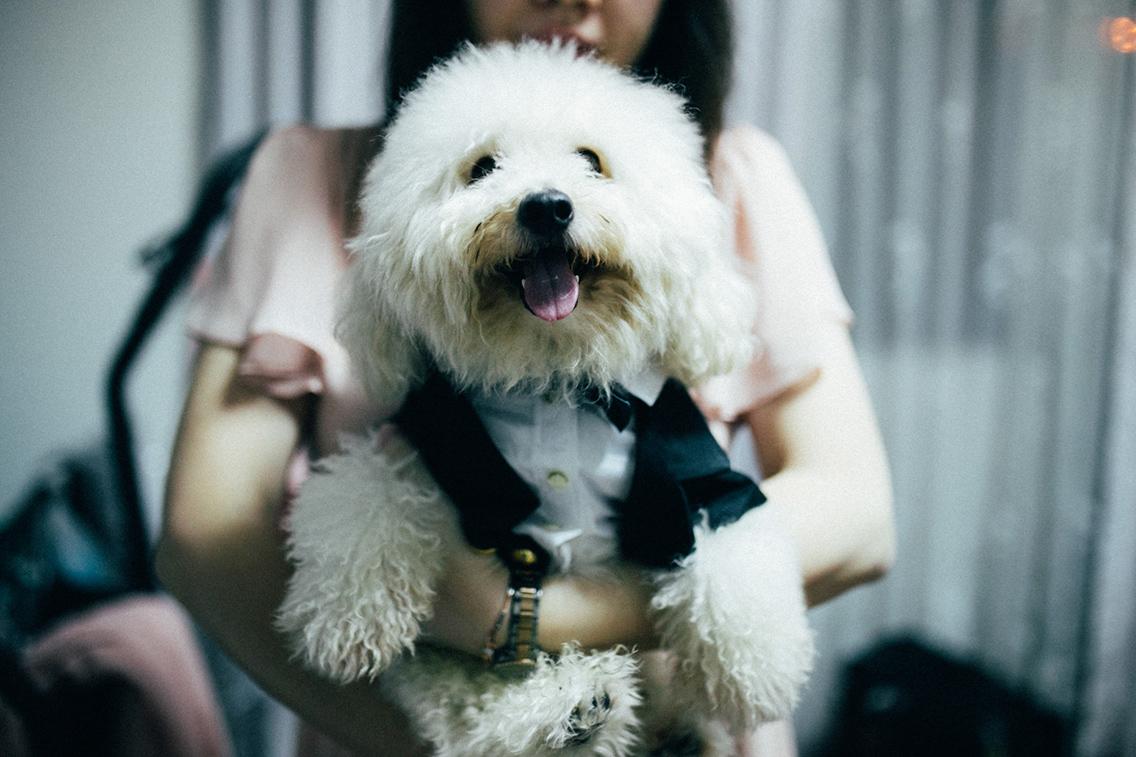 4-hellojanelee-evelyn-jim-actual-wedding-malaysia