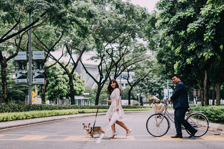 huiwen-postwedding-with-pet-corgi-31